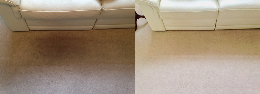 carpet cleaning results before & after